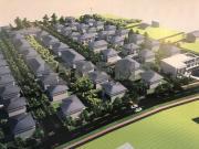 Teren cu PUZ aprobat in Borhanci pentru case sau duplex