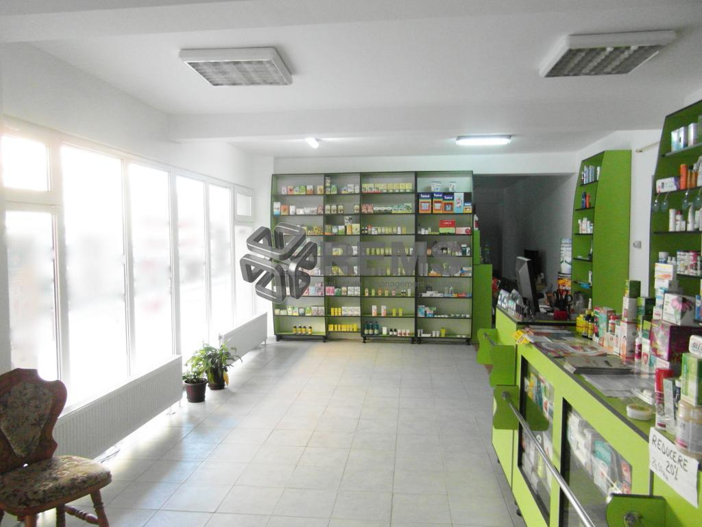 Activitati Medicale / Farmacie / Salon Infrumusetare / Showroom