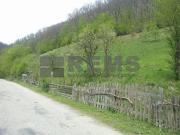 Teren pentru constructie cabana Valea Ierii